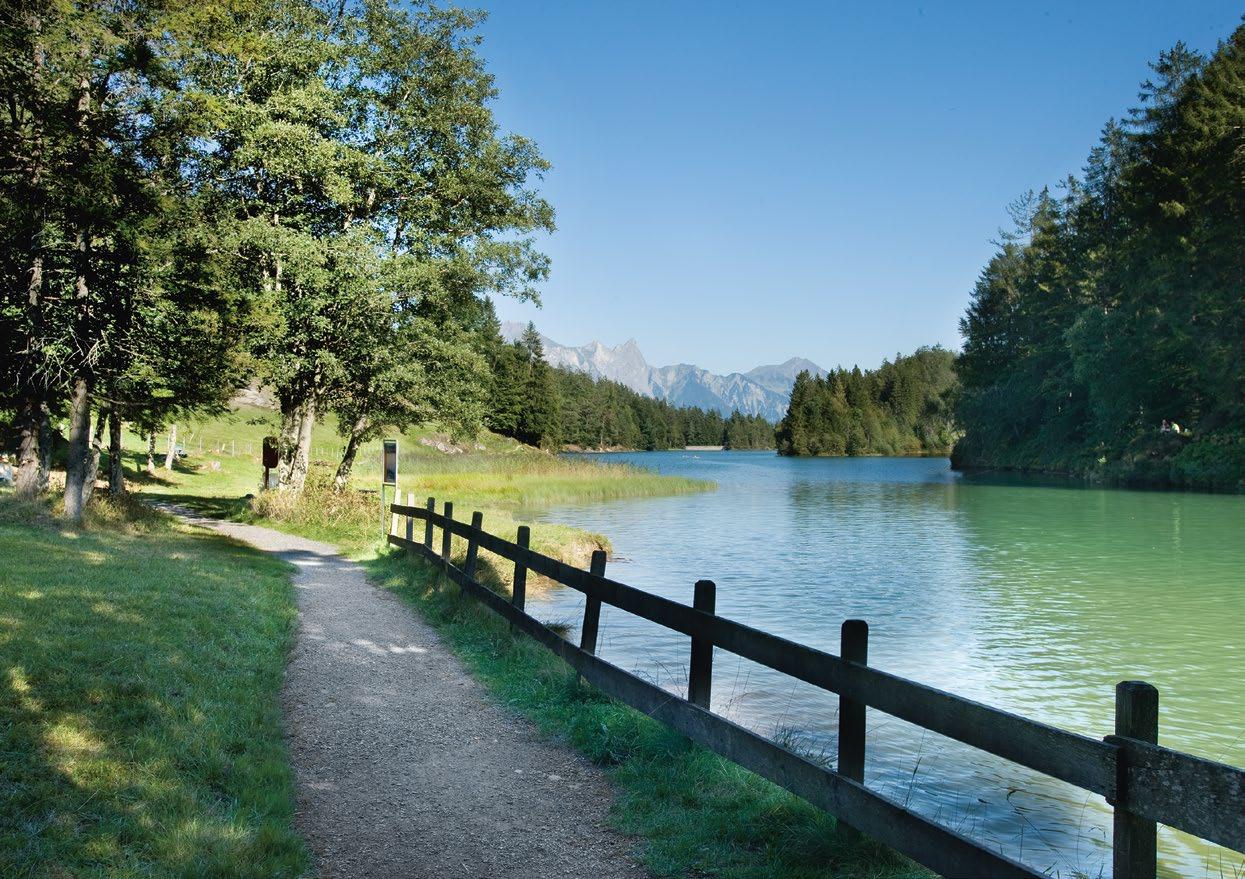 Rundweg Chapfensee