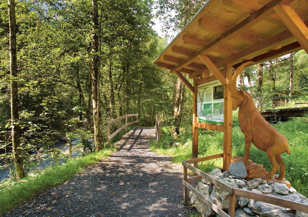 Steinbock-Lehrpfad und Steinbockweg Weisstanental